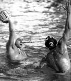 Water-polo : MONTPELLIER WP / REIMS